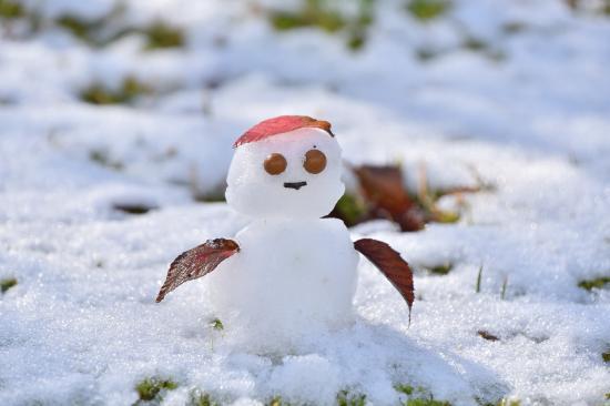 初積雪!!の園内より☆