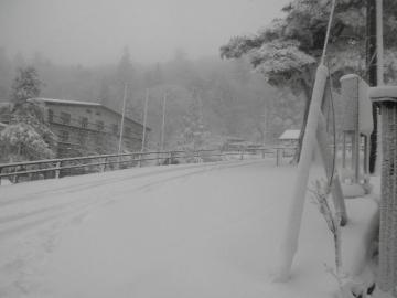 冬になっちゃった